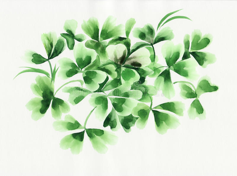 Ierse klaverbladeren vector illustratie