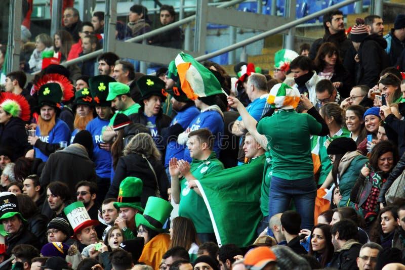 Ierse vlaggen stock afbeeldingen