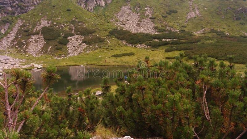 Iezer sjö royaltyfria foton