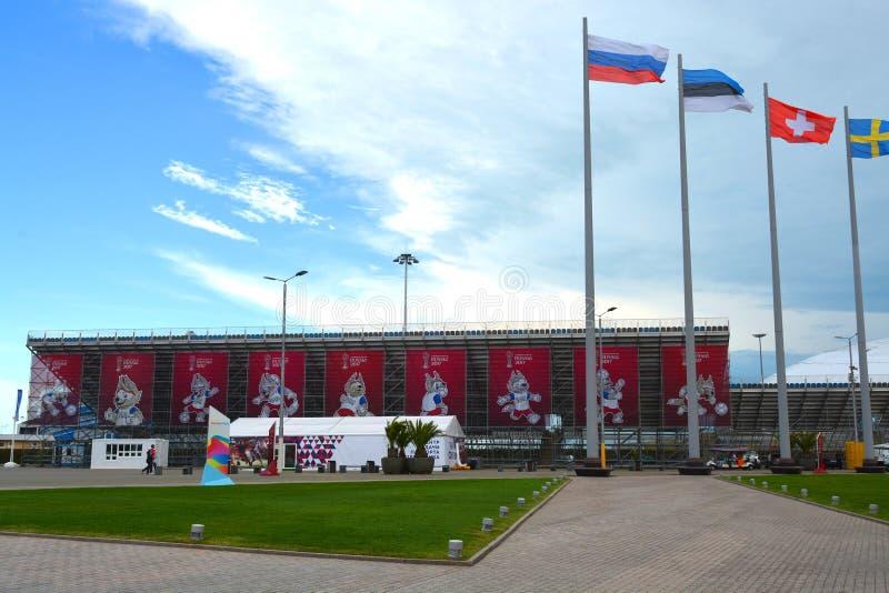 IFA Confederations Cup 2017 i Sochi fotografering för bildbyråer