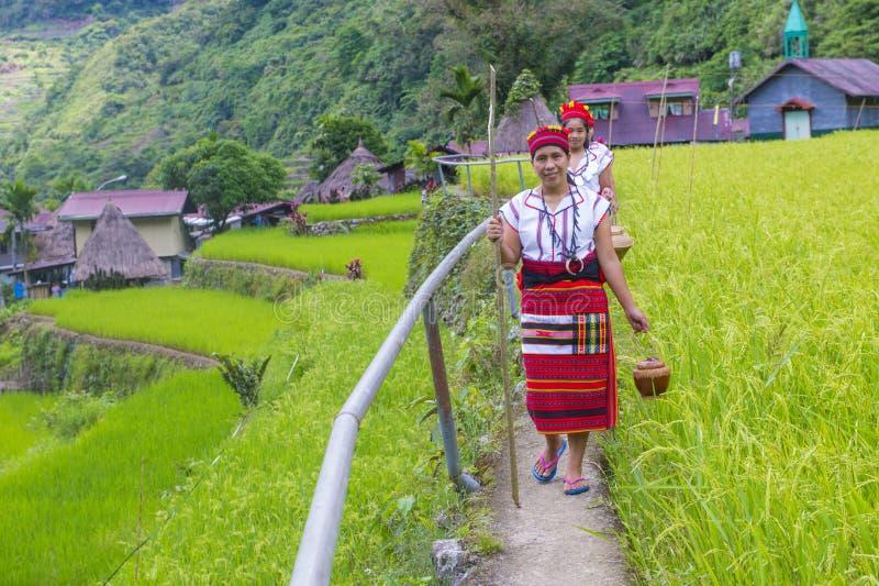 Ifugao-ethnische Minderheit in den Philippinen lizenzfreie stockbilder