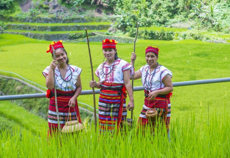 Ifugao-ethnische Minderheit in den Philippinen stockfotografie