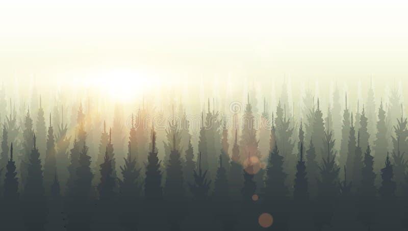 Iglasty lasowy sylwetka szablon Zmierzch, wschód słońca, półmrok ilustracji