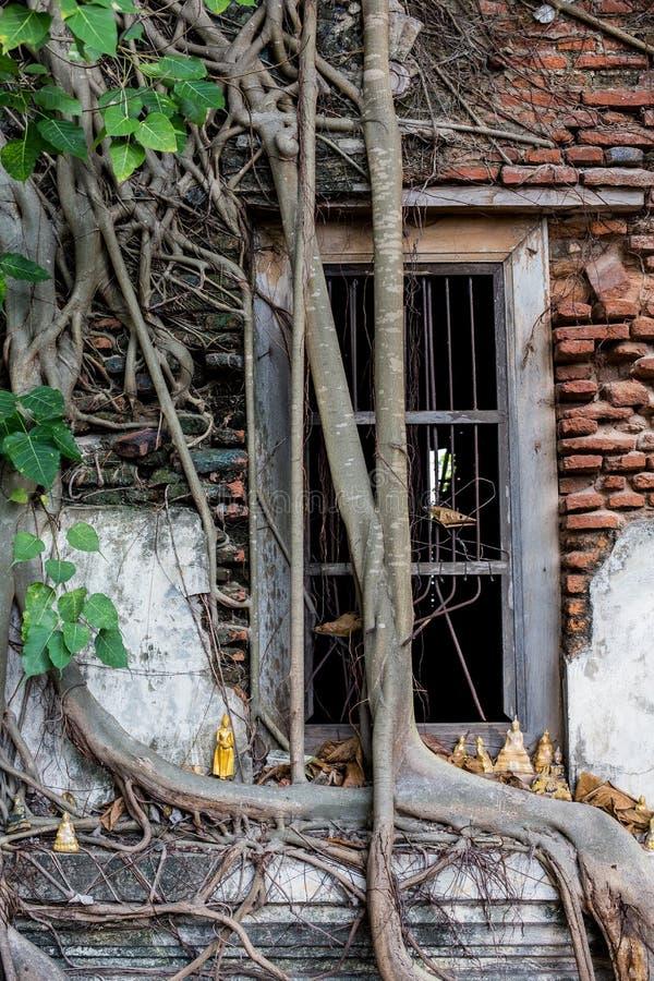 Iglesia dilapidada en Wat Rat Bamrung Wat Ngon Kai - Samut Sakhon, Tailandia fotos de archivo