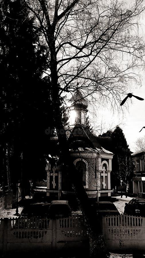 Iglesia en Lutsk, Ucrania y cuervo imágenes de archivo libres de regalías