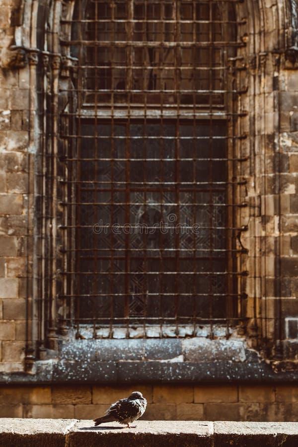 Iglesia vieja en el cuarto g?tico de Barcelona Tambi?n se llama como Barri Gotic fotos de archivo