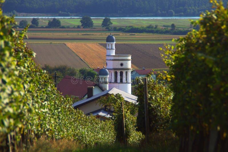 Iglesia y viñedos en Bogojina, Eslovenia fotografía de archivo