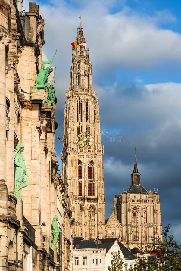 Iglica katedra Nasz dama, Antwerp, Belgia fotografia royalty free