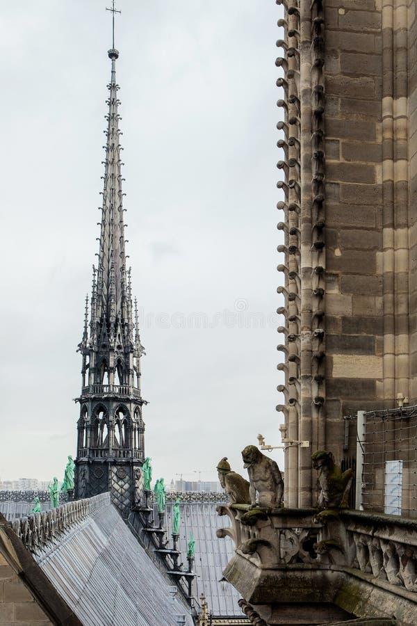 Iglica Notre Damae katedra obraz royalty free