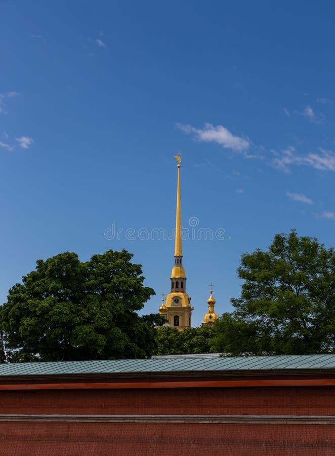 Iglica Peter i Paul katedra St Petersburg Rosja zdjęcie royalty free
