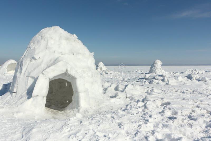 Iglu, der auf einer schneebedeckten Lichtung steht stockfotografie