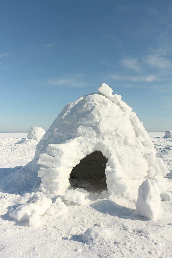 Iglu que está em uma clareira nevado fotografia de stock