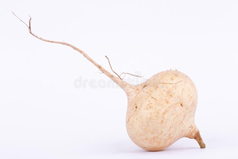 Ignam fasola jest bączastym korzeniowego warzywa owoc (Jicama) obrazy royalty free