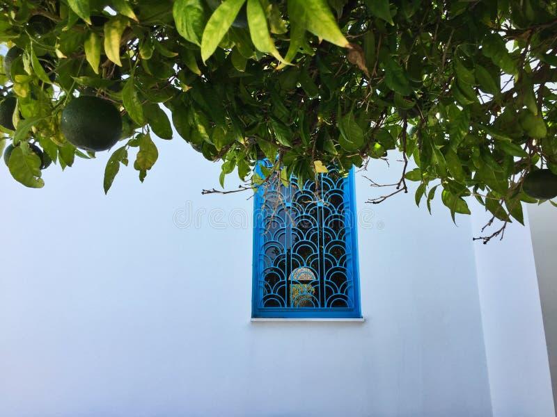 Igreja branca, janela azul e árvore alaranjada verde, Grécia imagens de stock royalty free