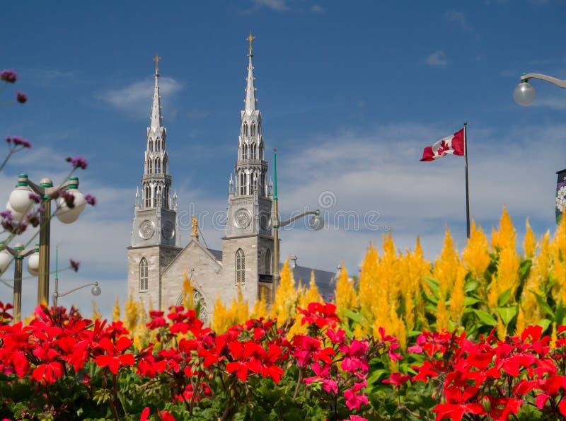 Igreja da baixa de Ottawa com flores foto de stock