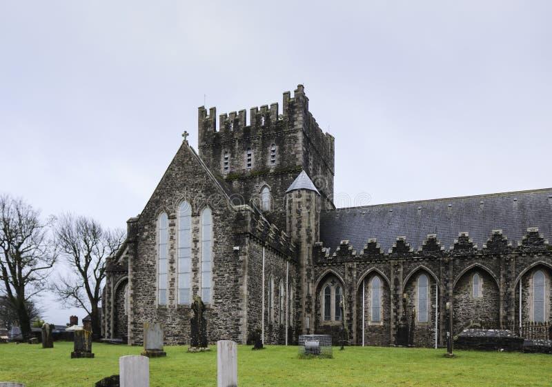 A igreja da catedral de St Brigid em Kildare imagens de stock