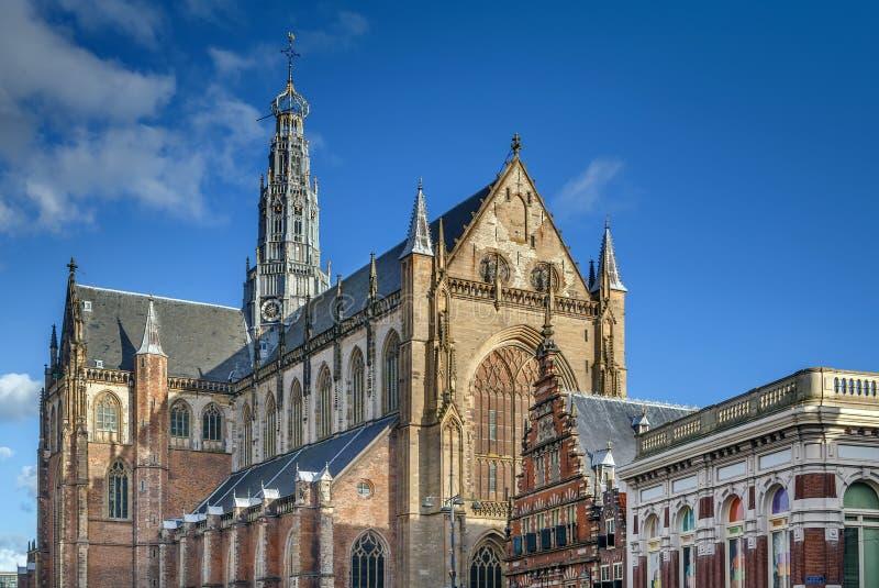Igreja de Saint Bavo, Haarlem, Pa?ses Baixos fotografia de stock