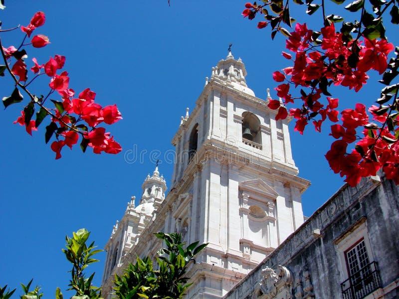 Igreja de Sao Vicente de Fora, royalty free stock photo