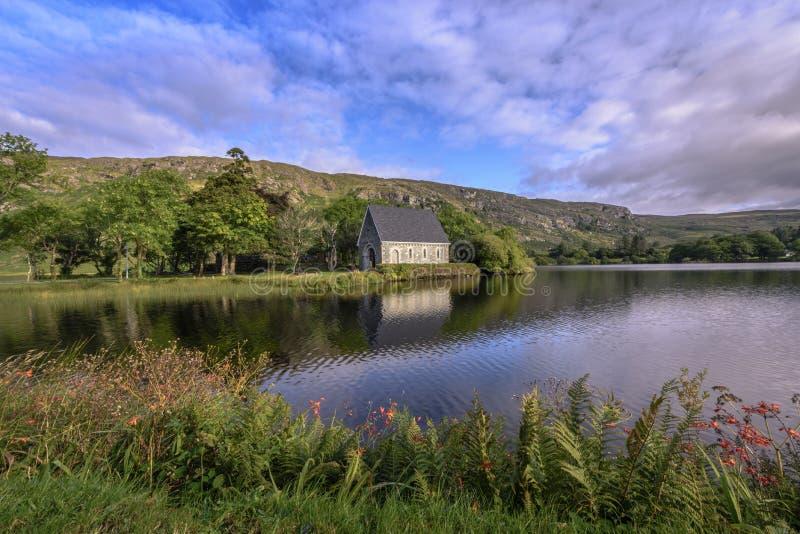 Igreja irlandesa pequena em uma península na frente dos montes com flores e a samambaia de florescência - a oratória do ` s do St imagem de stock royalty free