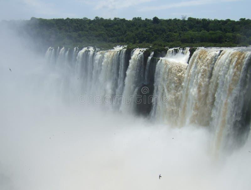 Iguacu baja parque nacional foto de archivo libre de regalías