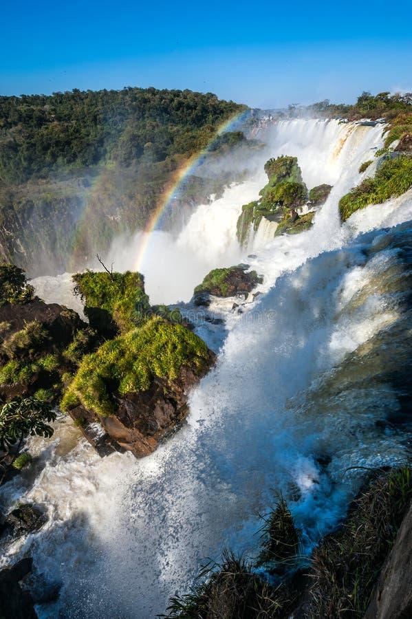 Iguacu cade dal lato dell'Argentina fotografia stock