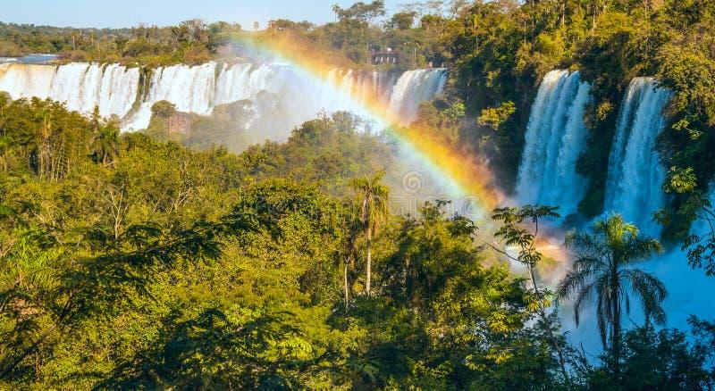Iguacu cai do lado de Argentina imagens de stock