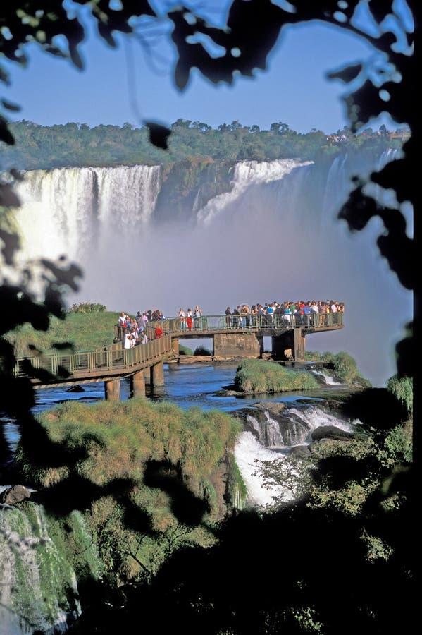 Download Iguacu Falls stock photo. Image of tourist, water, green - 4156476