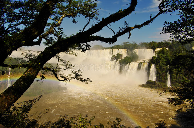 Iguacu Falls. A look to mighty Iguacu waterfalls between Argentina and Brasil through the branches of rain forest stock photography