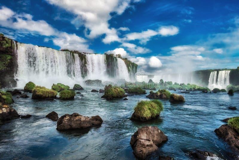 Iguacu nedgångar, Brasilien, Sydamerika royaltyfri fotografi