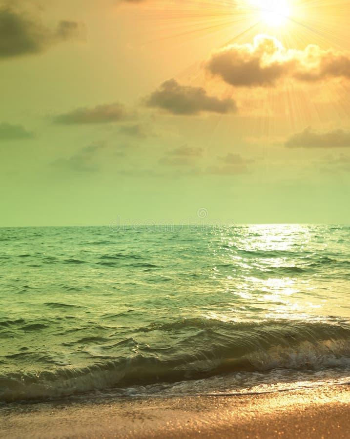 Igualación de paisaje tropical foto de archivo libre de regalías