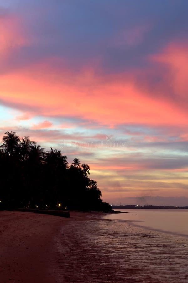 Igualación de puesta del sol en la playa con las palmas fotografía de archivo