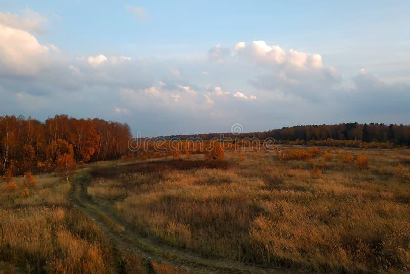 Igualación del cielo contra bosque y campo del otoño imagenes de archivo
