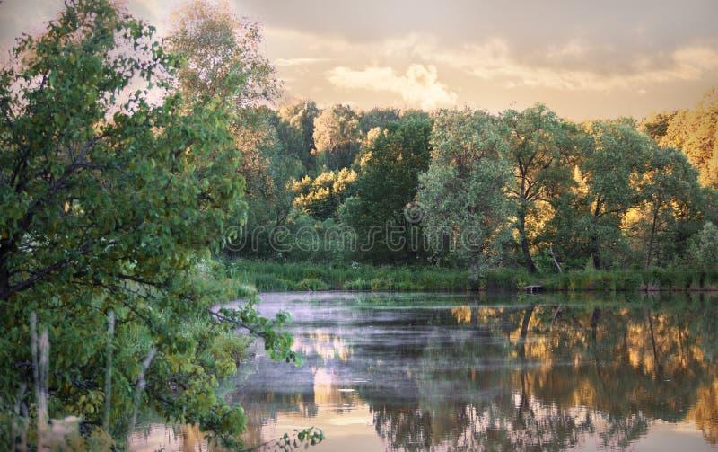 Igualando paisaje con vistas al lago, sobre la superficie cuyo miente la niebla imagen de archivo