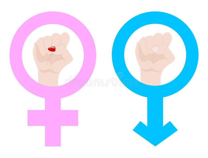 Igualdade de gênero Símbolos do homem e da fêmea, do homem e da mulher Cores azuis e cor-de-rosa Punhos do aumento Ilustração do  ilustração do vetor