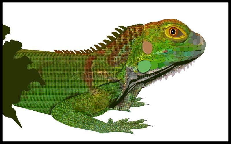 Iguana ilustración del vector