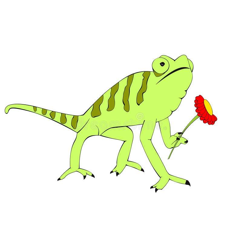 Iguana amorosa verde fotografia stock libera da diritti