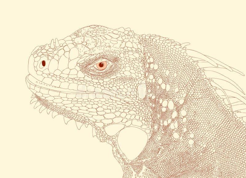 iguana głowy ilustracja wektor