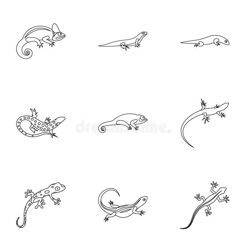 Iguana icons set, outline style. Iguana icons set. Outline illustration of 9 iguana icons for web stock illustration