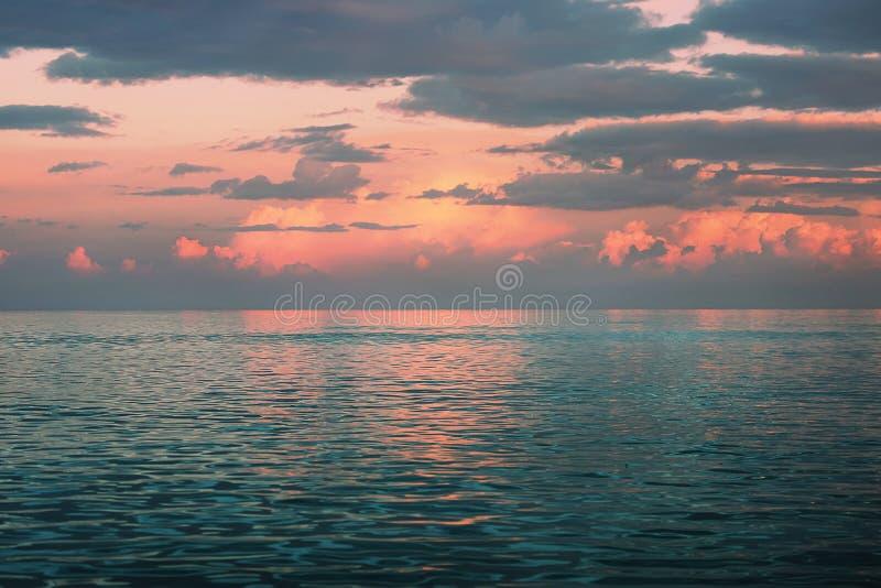 Iguane sur la plage photographie stock libre de droits