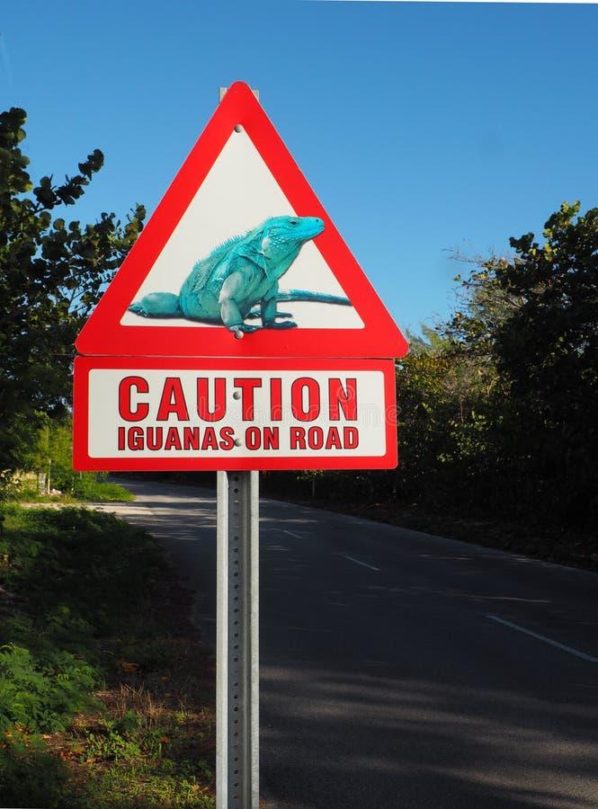 Iguanes de précaution sur le panneau d'avertissement de route photos stock
