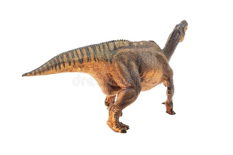 Iguanodon, δεινόσαυρος στο άσπρο υπόβαθρο στοκ εικόνα
