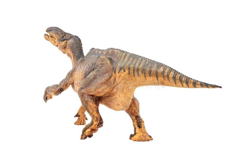 Iguanodon, δεινόσαυρος στο άσπρο υπόβαθρο στοκ φωτογραφίες