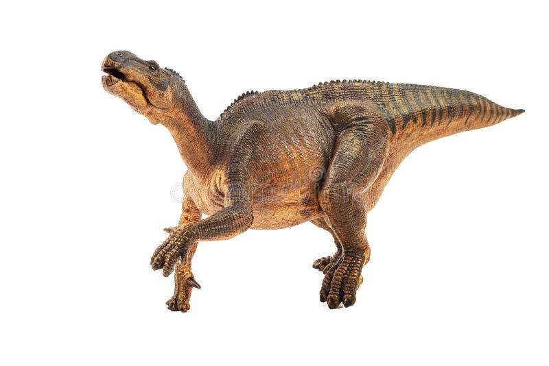 Iguanodon, δεινόσαυρος στο άσπρο υπόβαθρο διανυσματική απεικόνιση