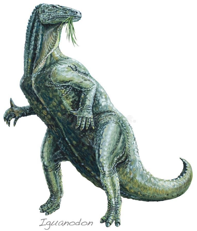 Iguanodon 库存例证