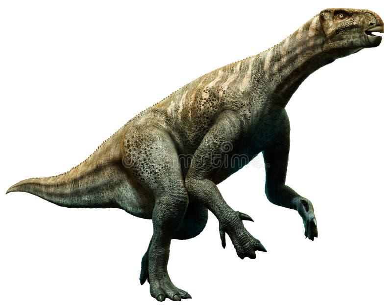 Iguanodon ilustração do vetor