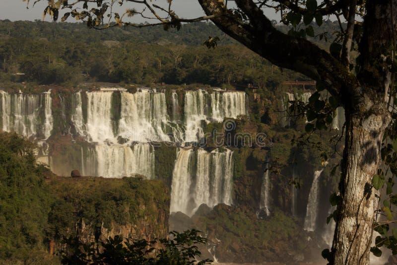 Iguassu baja con los árboles fotos de archivo libres de regalías