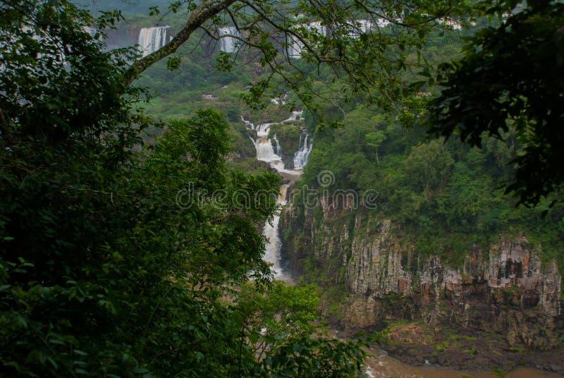 Iguassu cai, a s?rie a maior de cachoeiras do mundo, vista do lado brasileiro fotografia de stock royalty free