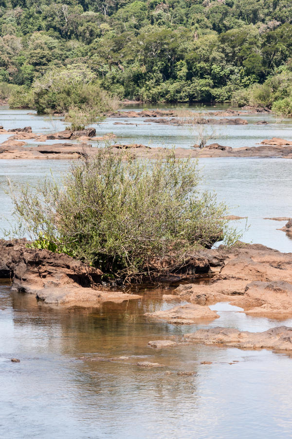 Iguassu Fluss lizenzfreie stockbilder