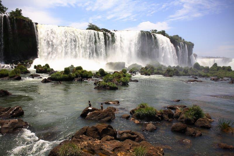 Iguassu (Iguazu; Caídas de Iguaçu) - cascadas grandes fotografía de archivo