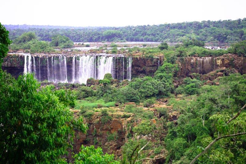 Iguassu (Iguazu; Quedas de Iguaçu) - grandes cachoeiras imagens de stock royalty free